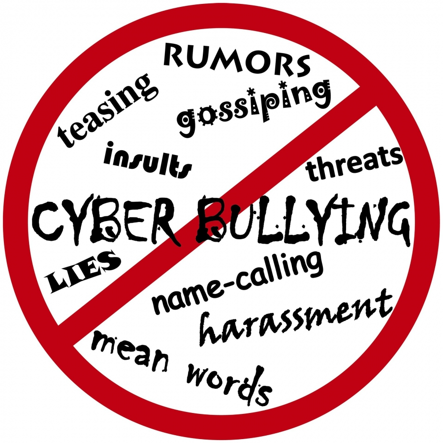 Lawyer Takes Aim at Cyberbullying, Looks to Expand Legal Education Program